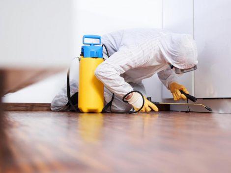 Дієві способи дезінфекції вашої квартири