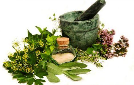 Які трави очищають кишківник?