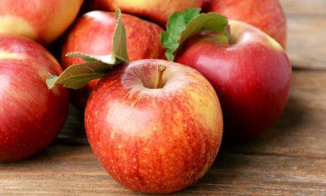Щоденне вживання яблук