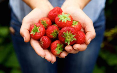 Користь та зберігання полуниці