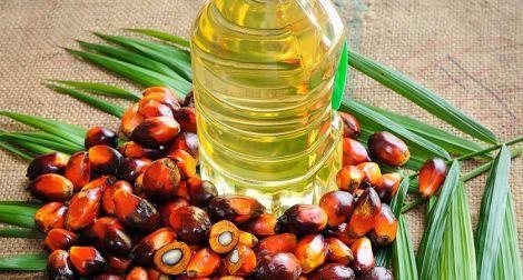 Пальмова олія провокує ожиріння
