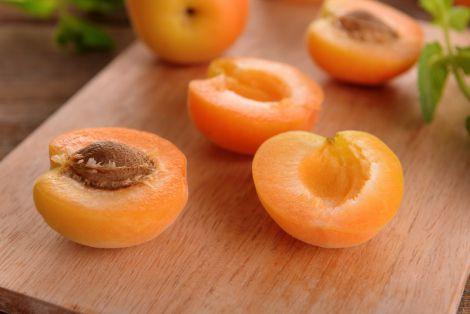 Користь абрикосів для організму