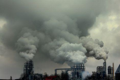 Забруднене повітря може проникати у плаценту вагітних