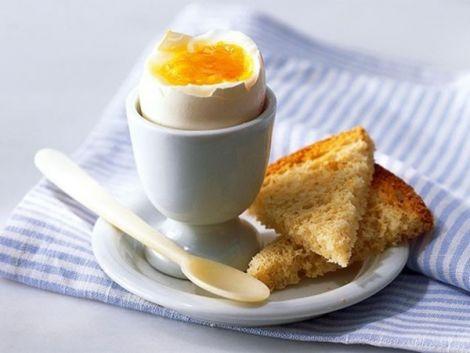 Яєчний білок для активності