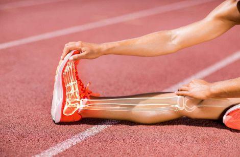 Механізм впливу спорту на імунітет і кістки