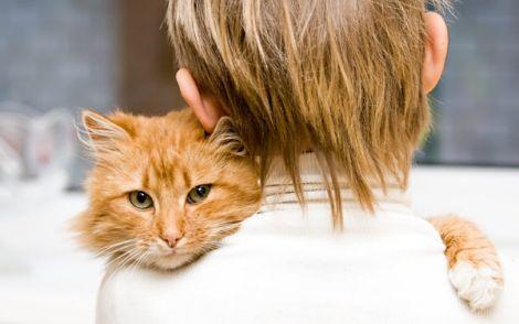 Коти лікують людей