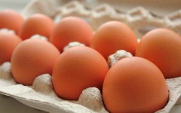 Користь яєць