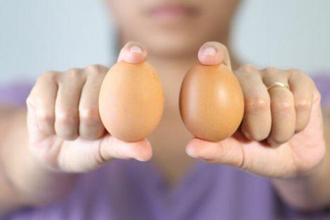 Користь вживання курячих яєць