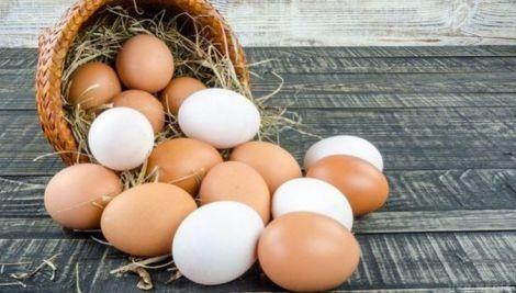 Курячі яйця: корисні властивості