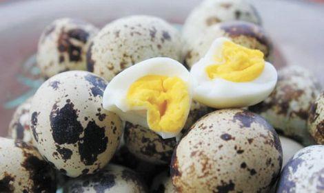 Чому корисно їсти перепелині яйця?