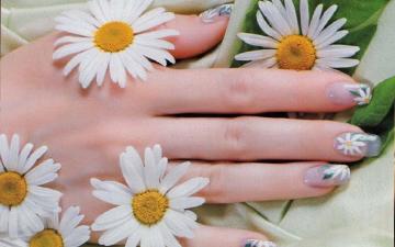 ромашка ефективно відбілить ваші нігті