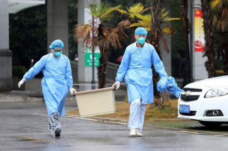 Чи зможе людство побороти коронавірус?