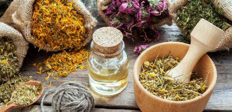 Лікарські трави, які можуть нашкодити здоров'ю