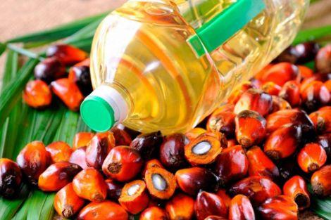 Удар по судинах і серцю: чим ще шкідлива пальмова олія