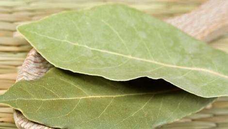 Лавровий листок чудово дезинфікує