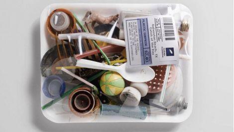 Шкода пластику