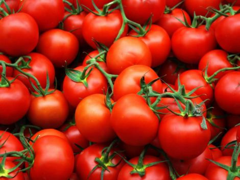 Користь томатів