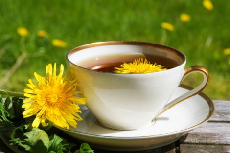 Кому корисно пити чай з кульбаби?