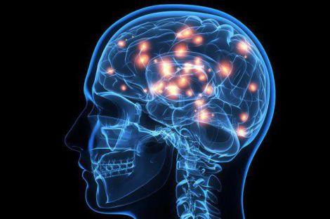 Мозок передбачає події