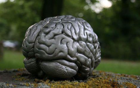 Ожиріння впливає на структуру мозку