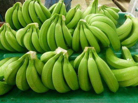 Корисні зелені банани