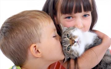 спілкування дітей та тварин слід правильно організовувати