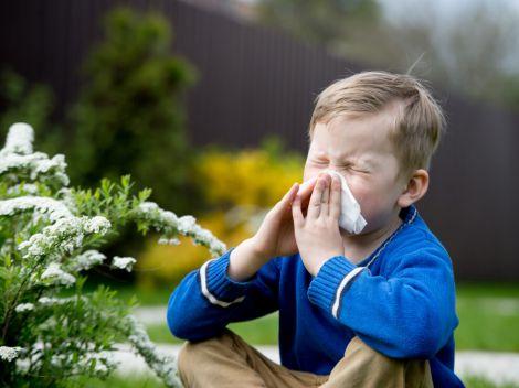 Алергія призводить до проблем з серцем
