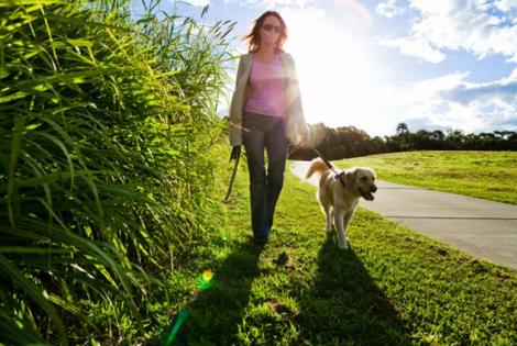 Взаємодія з природою позитивно впливає на здоров'я