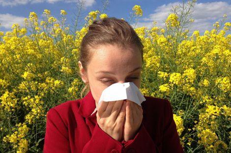 Алергія: шість порад, які допоможуть вам пережити сезон пилку