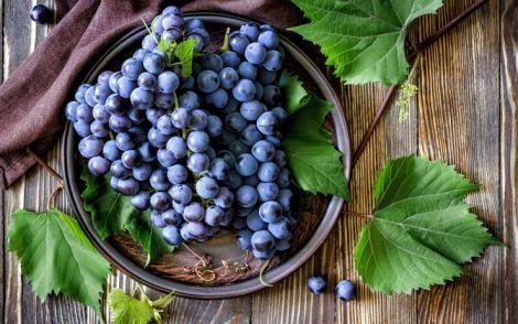 Корисний виноград