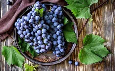 Вибираємо смачний та корисний виноград