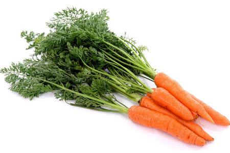 Властивості моркви