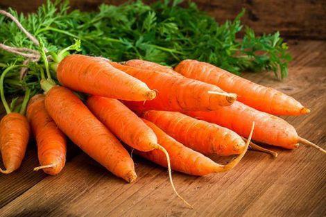 Морква бореться з вірусами