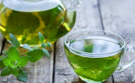 М'ята - цілюща рослина для нашого здоров'я