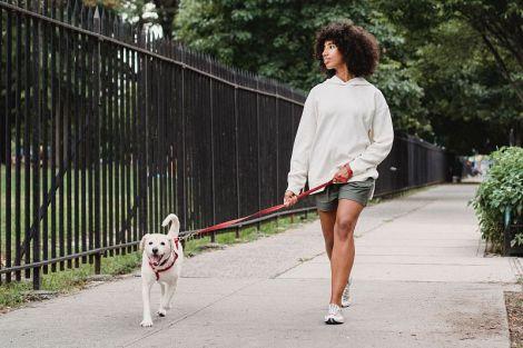 Що відбувається з вашим тілом під час простої прогулянки
