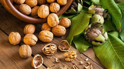Волоські горіхи від діабету