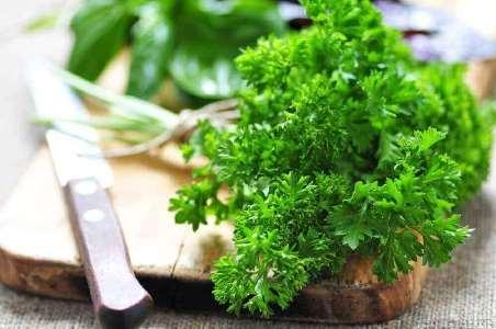 Користь петрушки для здоров'я нирок
