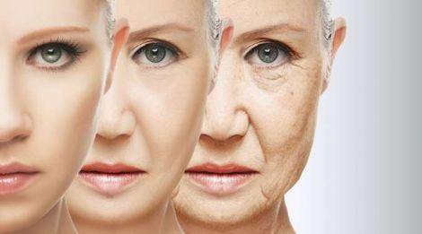 Як зупинити старіння організму?