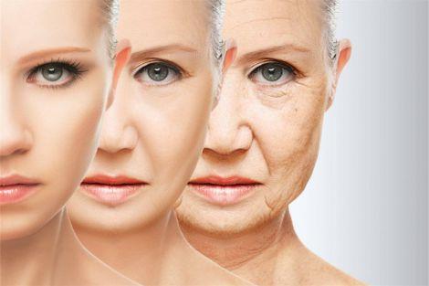 Продукти, які гальмують процеси старіння