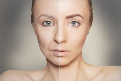 Фактори старіння організму