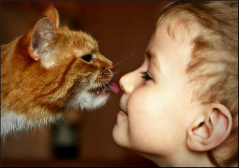 Котик з дитиною