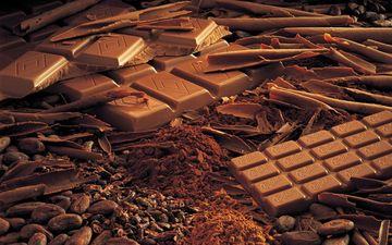 Правильна доза шоколаду приносить користь організму