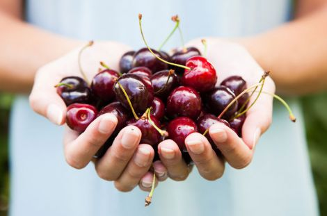 Чому шкідливо їсти вишні на голодний шлунок?
