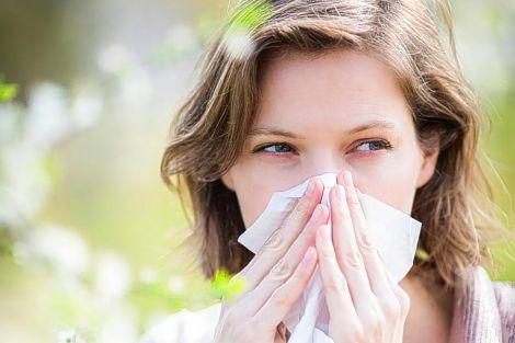 Винайдено вакцину від алергії на пилок рослин