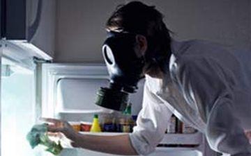 """""""Холодильні"""" бактерії"""