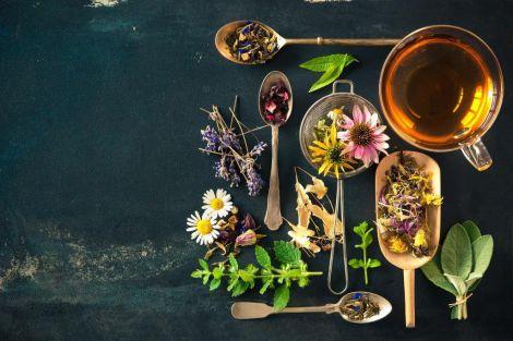 Лікарі-дієтологи назвали кращі чаї для очищення організму від токсинів