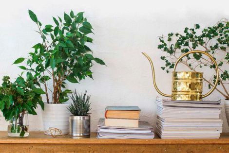 Як ефективно очистити повітря у приміщенні?