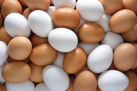 Вживання курячих яєць