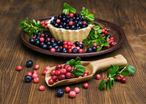 Ягоди, які корисно їсти восени
