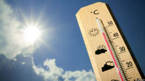 Глобільне потепління впливає на стан серця новонароджених